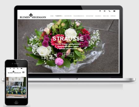 Homepage erstellen Darmstadt, Webdesign, Webdesigner, SEO Suchmaschinenoptimierung, Google Ranking
